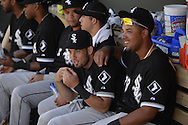 MESA, AZ - MARCH 08:  Jose Abreu #79 and Adrian Nieto #17 of the Chicago White Sox look on during the spring training game between the Oakland Athletics and Chicago White Sox on March 8, 2015 at Hohokam Stadium in Mesa, Arizona. (Photo by Ron Vesely)   Subject:  Jose Abreu; Adrian Nieto