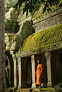 Ta Prohm Kmer temple, Angkor Wat, Siem Reap, Cambodia