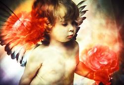 Little Angel with Roses.