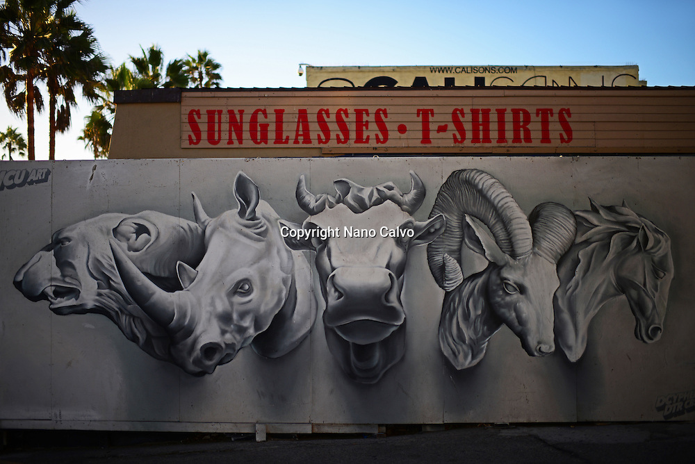 Wildlife graffiti on wall at Venice Beach, California.