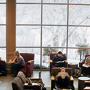 Students study at Jepson during the first week of spring classes. Photo by Rajah Bose