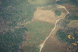 Boundary Mountains, ME.   Clearcuts as seen from an airplane.  Northern Forest
