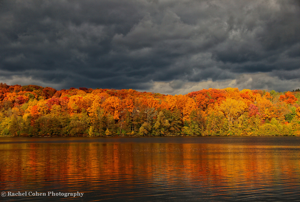 &quot;Storm&quot;-2<br /> <br /> If you love autumn color, then let yourself delve deeply into this image of vibrant fall foliage reflected onto the Huron River below, with dark and stormy clouds above!!<br /> <br /> Autumn Landscapes by Rachel Cohen