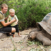 A father shows his son a  Galápagos giant tortoise (Chelonoidis nigra, formerly Geochelone elephantopus) at the Charles Darwin Research Station (CDRS, operated by the Charles Darwin Foundation) in Puerto Ayora on Santa Cruz Island, Galápagos islands, Ecuador, South America. This species is the largest living tortoise and is native to seven islands of the Galápagos archipelago. Fully grown adults can weigh over 300 kilograms (661 lb) and measure 1.5 meters (5 feet) over the curve of the shell. They are long-lived with a life expectancy of up to 100-150 years in the wild. Populations fell dramatically because of hunting and the introduction of predators and grazers by humans since the 1600s. Only ten subspecies of the original twelve exist in the wild. Since Galápagos National Park and the Charles Darwin Foundation were established, hundreds of captive-bred juveniles have been released back onto their home islands. For licensing options, please inquire.