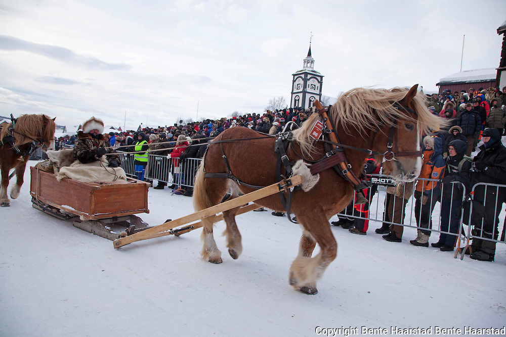 The winter fair Rørosmartnan is a national event with approximately 75.000 visitors each year. The World Heritage site Røros forms a unique backdrop. As part of the opening ceremony over eighty equipages from Sweden, Østerdalen, Hedmark, Gauldalen and Tydal participate in a parade,  after travelling for up to 15 days in the old-fashioned manner with horse and sleighs.