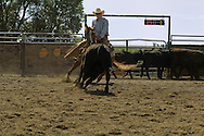 Tom McGuane, author, rides cutting horse in competition, Big Timber, Montana