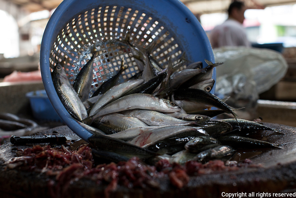 fresh fish spill from a basket in a George Town, Penang wet market, Malaysia