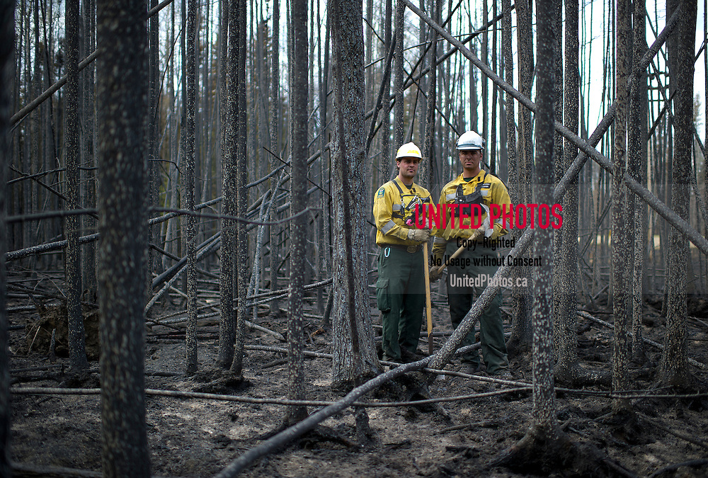 how to become a forest firefighter in alberta