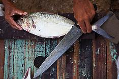 Mucuripe, Mercado de Peixes / Mucuripe Fish Market, Fortaleza