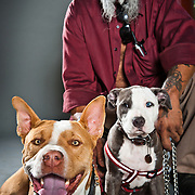 A man nicknamed Tears poses with his pit bulls Start and Mr. Blue for a portrait.