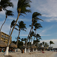 Aruba, a Caribbean Island.  A sunshiny place of balmy weather sandy beaches duty free shopping and one of the most fascinating ecosystems.Palm Beach.
