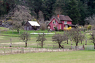 Daniel Henry Ruckle house on the active farmland now in Ruckle Provincial Park on Salt Spring Island, British Columbia, Canada.  The Ruckle Farm has been in continuous use as farmland since Henry Ruckle began farming it in 1872.  Photographed from Beaver Point Road next to the park headquarters building.