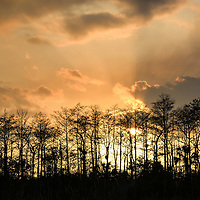 The sky is on fire after a controlled burn in the Big Cypress National Preserve near Everglades National Park, Florida