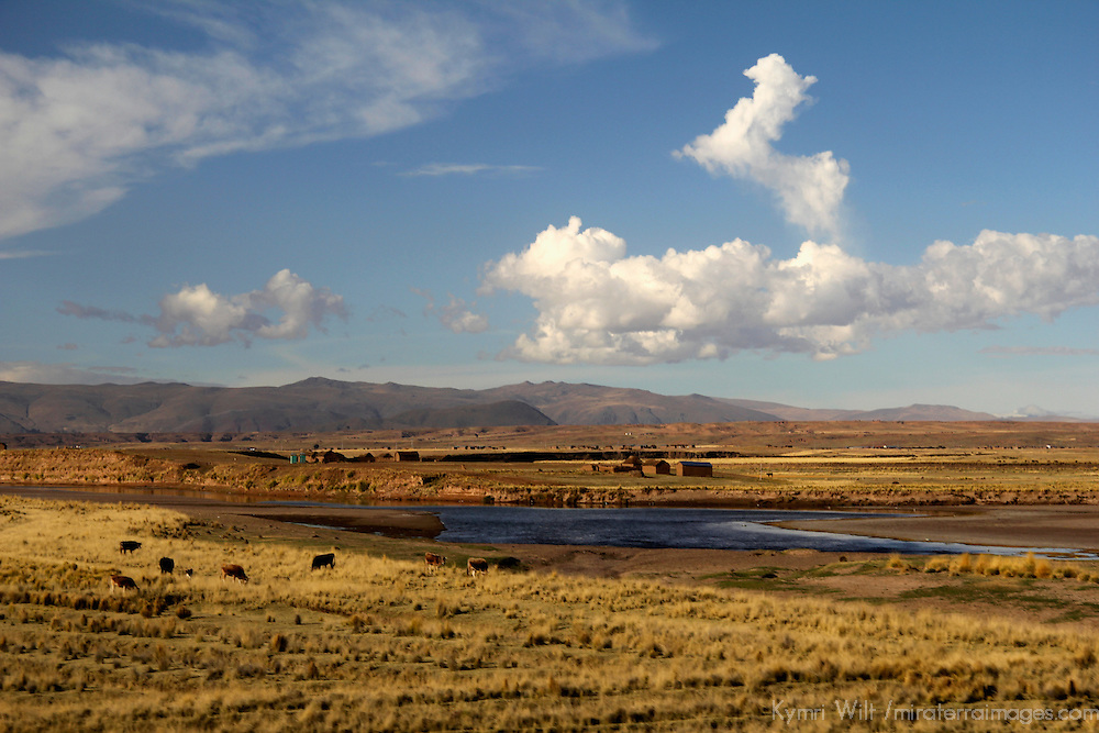 South America, Peru. Landscape scenery viewed along the route of the Andean Explorer train between Cusco and Puno, Peru.
