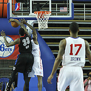 Delaware 87ers Forward Thanasis Antetokounmpo (19) drives towards the basket as Springfield Armor Forward Willie Reed (33) blocks the lay up attempt in the course of a NBA D-league regular season basketball game between the Delaware 87ers (76ers) and Springfield Armor (Nets) Saturday, Dec. 28, 2013 at The Bob Carpenter Sports Convocation Center, Newark, DE
