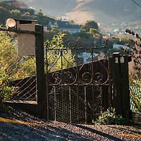 Morning sunlight strikes an old wrought iron gate at the roadside,  wire fencing and native New Zealand plants and foliage to either side, with a view over the town of Lyttelton and surrounding hills beyond