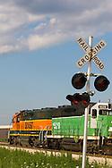 A BNSF train crosses a road under a summer sky.