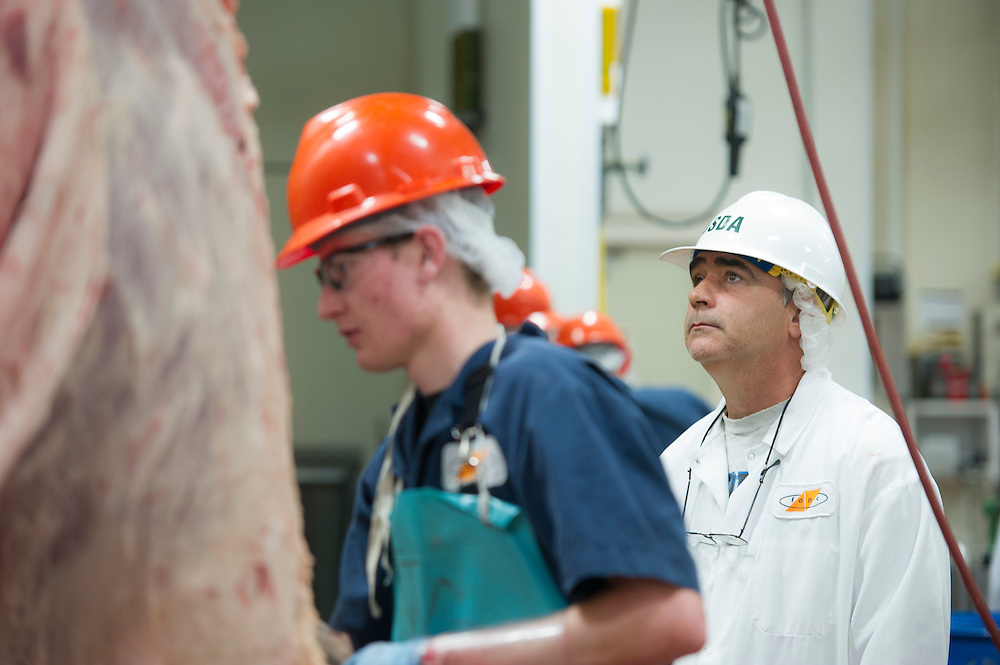 USDA meat inspector on the Meat processing floor of the FAPC at ...