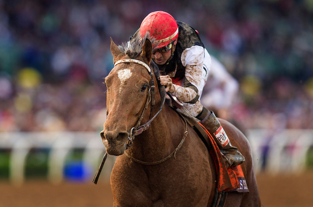 November 01 2014: Texas Red, ridden by Kent Desormeaux and trained by J. Desormeaux, wins the Breeders' Cup Juvenile (G1) at Santa Anita Park in Arcadia, California on November 1, 2014. Alex Evers/ESW/CSM