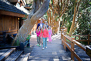 ARGENTINA King Willem-Alexander, Queen Maxima, Princess Amalia, Princess Alexia and Princess Ariane visit during their christmas holiday national park Los Arrayanes in Villa la Angostura, Argentina, 22 December 2014 COPYRIGHT ROBIN UTRECHT