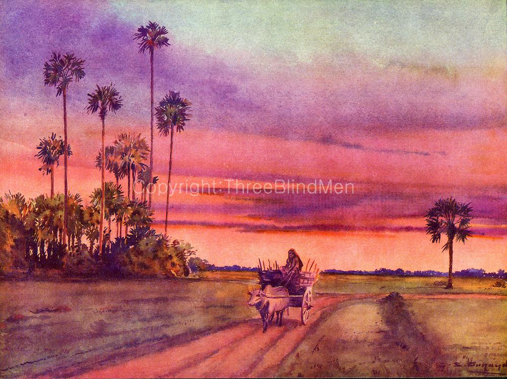 Jaffna sunset.1939 G.S.Fernando