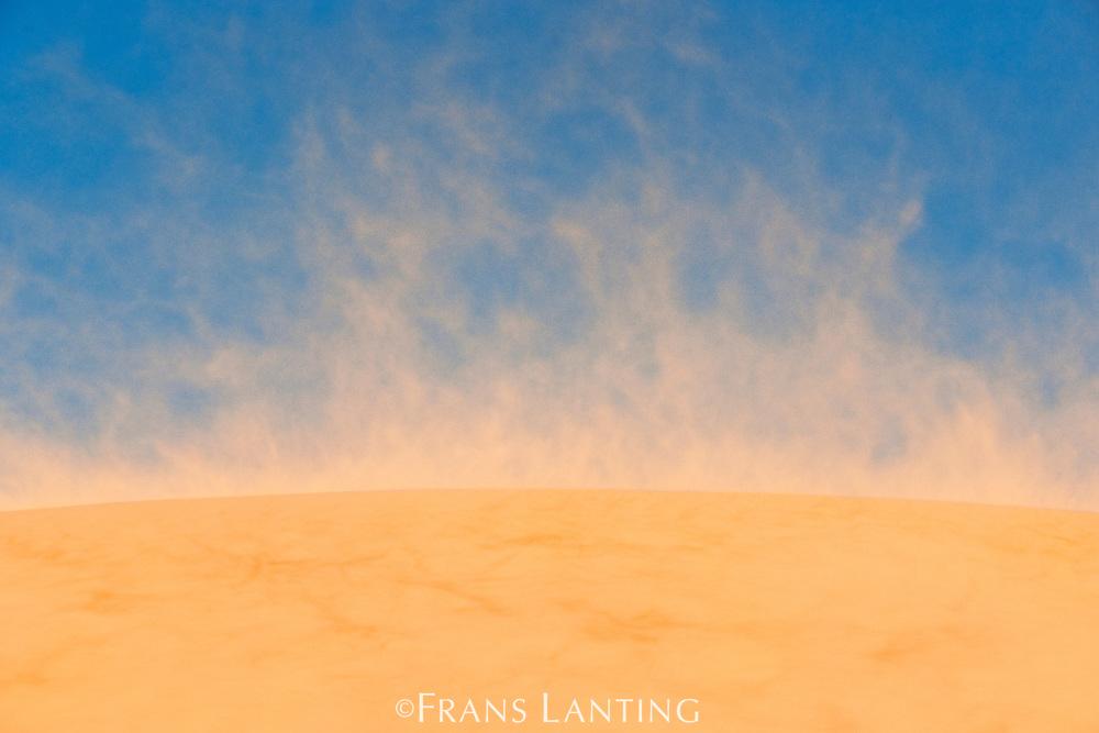 Sandstorm, Namib-Naukluft National Park, Namibia