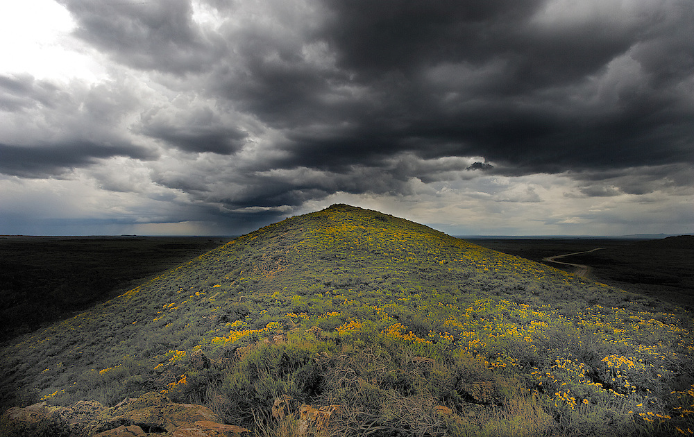 A Spring storm looms over a flower covered hill near Craters of the Moon National Monument in Central Idaho, near Sun Valley
