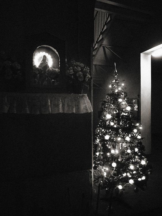 lonely, Street Photograhy, Italy, Milan, Milano, street photography, sad christmas, Xmas tree