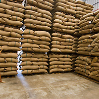Neumann Coffee Trading facility, Ho Chi Minh City, Vietnam 23 Nov 05