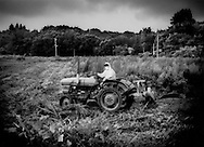 Farmer, wearing a hazmat suit to protect against high rates of radiation, cuts weeds that have taken over his field so that he can then plough under the radiation-contaminated topsoil or even remove the topsoil altogether so that radiation levels in future crops can meet Japanese national standards one day in the future.  The mountains northwest of crippled Fukushima Daiichi Nuclear Power plant were highly contaminated by fall-out from explosions at the plant.  Iitate-Mura, Fukushima Prefecture, Japan.