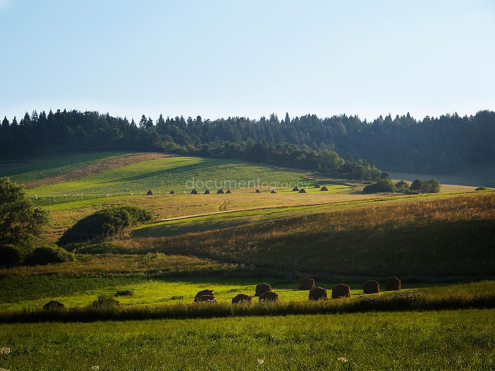 Farmland in eastern slovakia