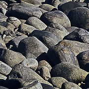 Rocks on the beach. Baja California Sur. Mexico.