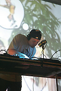 DJ Shadow performs during the second day of the 2007 Bonnaroo Music & Arts Festival on June 15, 2007 in Manchester, Tennessee. The four-day music festival features a variety of musical acts, arts and comedians..Photo by Bryan Rinnert.