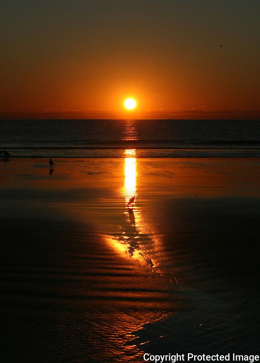 Brilliant Jekyll Island sunrise with sea birds