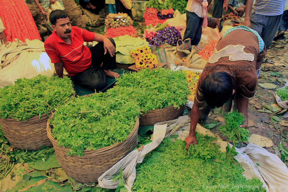 In the flower market in Calcutta, a man gathers fresh green leaves.