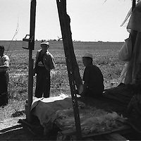 Tadjik refugees, on the land that they work in small co-operatives with the help from NGO's, in Kara-Dube, Kyrgyzstan.