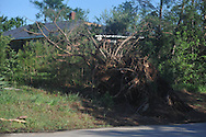 Storm damage in the Pine Flat area of Lafayette County south of Oxford, Miss. on Thursday, April 28, 2011. A Wednesday afternoon storm destroyed houses and uprooted trees.