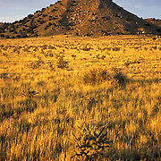 eastern Plains, Colorado