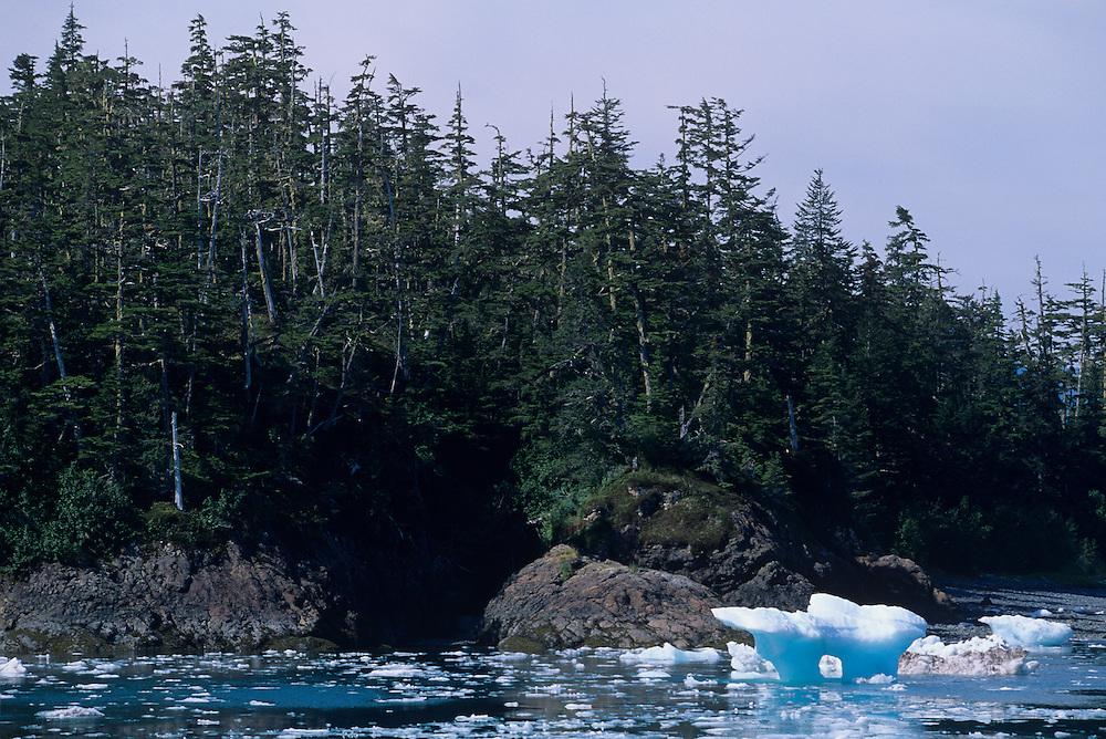 USA, Alaska, Icebergs from Columbia Glacier float in Prince William Sound