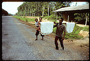 04: RUBBER FARM DRYING, SELLING RUBBER
