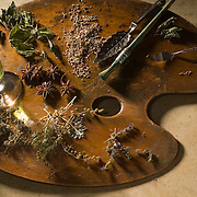 There's not much difference between a painter and an artisanal absinthe maker. Here you see some of the herbs used in making absinthe depicted as colors on an artist's palette, star anise, hyssop, lavender, melissa (lemon balm), Artemisia Absinthium (grand wormwood), and fennel seed to name a few.<br /> A glass of green absinthe sits on the palette along with an absinthe spoon, a paint brush, and spackling knife.