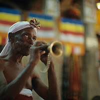 Sri Lanka, Musician plays in Buddhist Temple of the Tooth in Kandy