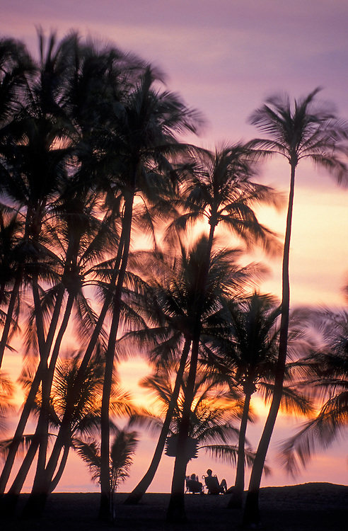 Palm trees and couple in beach chairs at Sunset at Anaehoomalu Bay, Waikoloa resort, Kohala Coast, Hawaii.