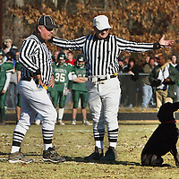 """""""PigSkin meet DogSkin"""" An unwanted visitor did his own thing during first half action of this Thanksgiving game. fragm"""