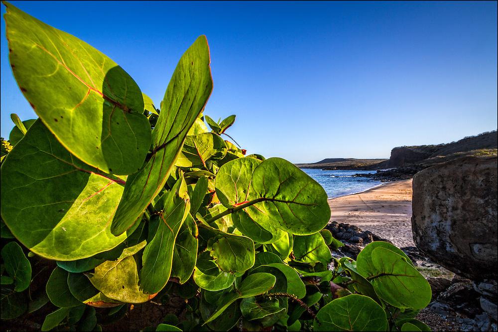 Beach on west end, Molokai, Hawaii