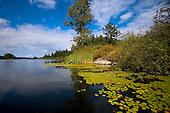 ELk Lake Scenes