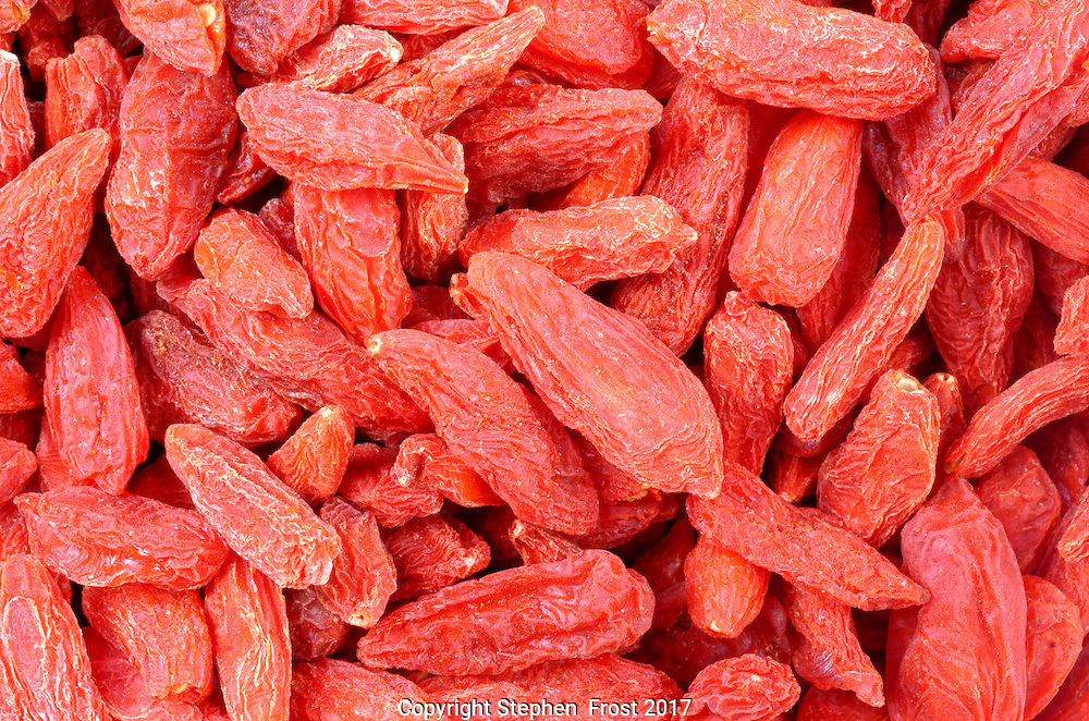 A close-up of dried goji berries.<br /> <br /> Goji, goji berry or wolfberry is the fruit of Lycium barbarum plant that is used in cooking.