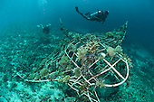 Coral Reef Restoration Projects