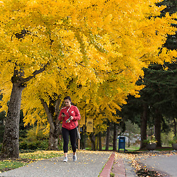 Fall color at PLU, Tuesday, Oct. 25, 2016. (Photo: John Froschauer/PLU)