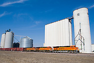 An eastbound BNSF Railway train pauses at an elevator in southern Nebraska.